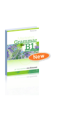 Mastering Grammar for B1 Greek Edition